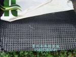 车库排水板/疏水板贵州厂家生产