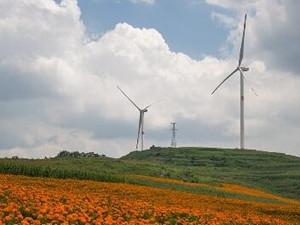 2019年全球風電機組市場將達到峰值