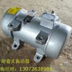 ZW-10混凝土振动器 YZS-10-4振动电机
