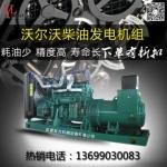 四川160KW瑞典沃尔沃 柴油发电机组200KVA价格