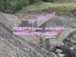 海堤防冲护坡铅丝笼|双绞铅丝石笼厂家|护岸铅丝笼网