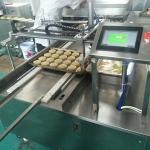 蛋黃餅刷蛋機 數控自動榴蓮餅刷油機