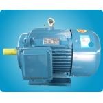 六安電機 Y2系列 電動機 電機 三相異步電機 三相異