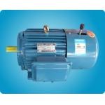 六安电机 YEJ系列 电机 三相异步 电动机 六安电机