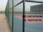 勾花网护栏网,勾花网护栏,体育场护栏网