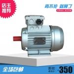 成都电机厂家 铝合金电机 YS8024/750w 微型电机