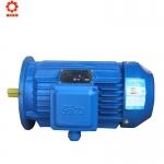 成都厂家供应 六安强力YE3电机YE3100L2 售后服务齐