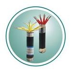 额定电压450/750V聚氯乙烯绝缘控制电缆