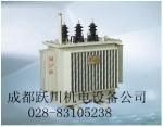 四川眉山乐山变压器厂家订做全密封油浸式配电变压器S9