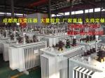 四川成都高压变压器厂家直销订做工业高压变压器