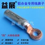 厂家直销-铜铝过渡端子,DTL-2-50mm铝合金线鼻子