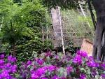 爬藤网边坡绿化生态系统爬网工程土工格栅网成都厂家直销