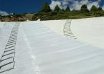 水产养殖土工膜厂家直销 HDPE 土工膜 防渗膜价格