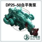 DP25-50X12 自平衡泵