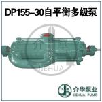 DP155-30*10 自平衡泵