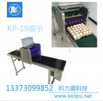 kelipu 鸡蛋喷码机_食品级喷印技术_全面高效