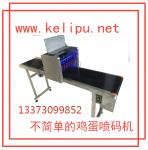 丹江口鸡蛋喷码机厂家科力普供应小型喷码设备