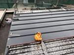 YX25-430矮立边铝镁锰板