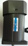 6W小型感應式電動機