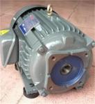 群策C02-43B0油泵电机量大从优