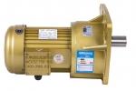 永坤齿轮减速电机型号NCH18-100W-50S/C