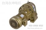 台湾永坤最具代表性的电机