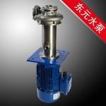 耐酸碱不锈钢立式泵,化工厂不锈钢立式泵,东元价格优惠