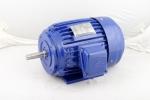 高崎水泵电机 CK成功型水泵马达