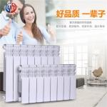 ur7002-300双水道压铸铝合金散热器