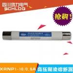 四川成都鸿力电气XRNP1-10/0.5A电压互感器保护高压