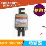 四川成都鸿力电气NGT2-1000v/250A 熔断器 厂家
