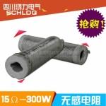 川南中频炉配件: 无感电阻15Ω-300W 无感电阻厂家 价