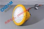 BAD85防爆高效节能灯-LED防爆灯厂家|供应商