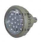 供应上海BCd63系列防爆高效节能LED灯10w到200W