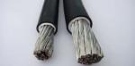 电机引接线JXN/JBQ/JBF电机电缆