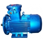 耐特 YBCTS 采煤機用隔爆型電動機