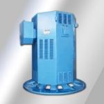 耐特 Y系列中型立式电机