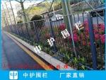 东莞城市绿化隔离栅 市政道路栏杆 人行道港式护栏