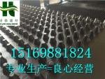 武汉洪山区20高地下室滤水板底板专用排水板