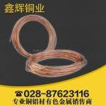成都紫铜软管 盘管 T1T2T3(紫铜) 30.5-192m