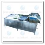 柳州YQX-800蔬菜清洗机 水果清洗机 多功能蔬菜清洗机