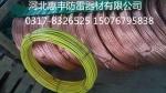 銅包鋼裸絞線/PVC銅包鋼絞線/絕緣皮絞線