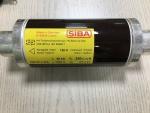德国SIBA西霸3001613.40高压熔断器