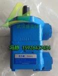 PVQ20-B2R-SE1S-10-C21-11