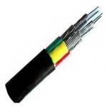 成都市 三芯交联 聚乙烯绝缘钢带铠装聚氯乙烯 护套电缆