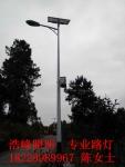 湖南常德津市農村太陽能路燈安裝農村太陽能路燈供應廠家