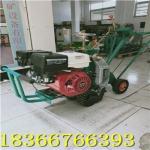 专业生产手推起草皮机 铲草坪专用起草机