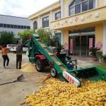新型大型全自动玉米脱粒机哪里价格低