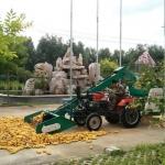 厂家畅销大型全自动玉米脱粒机价格低