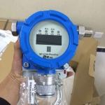 壁挂式RAE品牌一氧化碳检测报警器SP-2104Plus